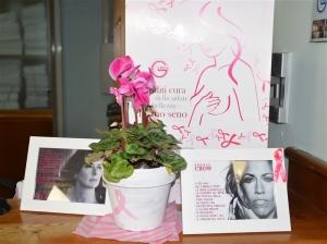 27 e 28 Novembre 2015 - La prevenzione come strumento efficace nella lotta contro il tumore al seno.  Altri 2 giorni di viste gratuite!